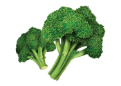 BROCCOLI / GRODDAR